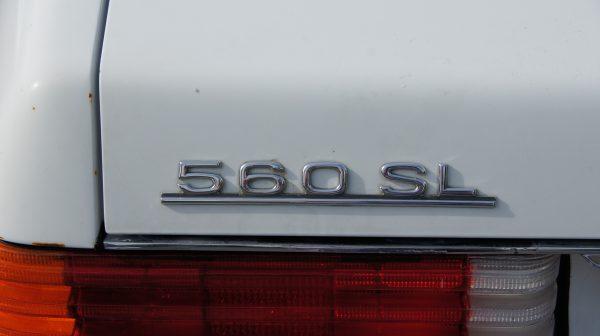DSC00604 600x336