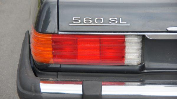 DSC00717 600x336