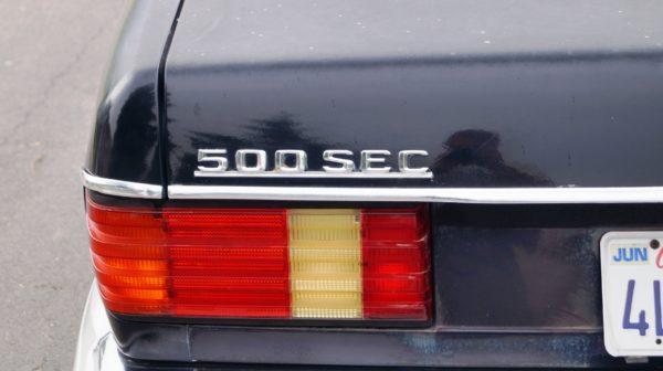 DSC05504 600x336